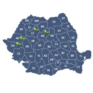 Locatii Mutari Timis Arad